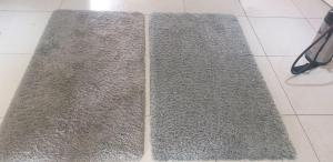 fluffy rug before and after