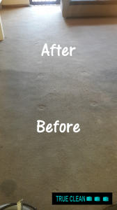 before and after carpet cleaning, south end,  port elizabeth 2