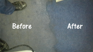 carpet cleaning before and after in port elizabeth