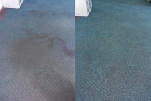 office carpets cleaned by true clean