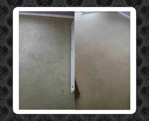 picture of before and after carpet cleaning